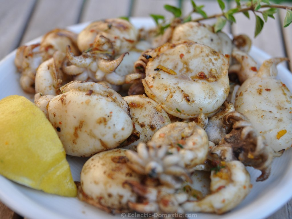 Delicious grilled calamari or sepia - Eclectic-Domestic