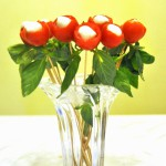 ED bouquet e3 150x150 From the heart ... to the heart (Tomato and mozzarella bouquet appetizer)